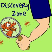 ROY-slider-DiscoveryZone-square