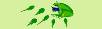 roy-slider-babytoddler-tadpoletales