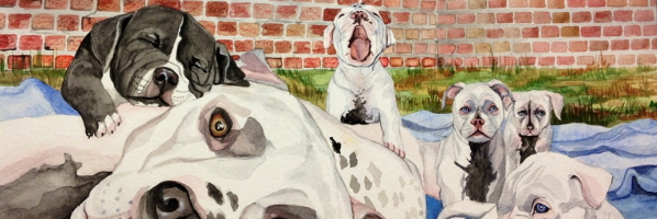 Itty Bitty Pitty in the Great Big City (Author visit) - August 3, 10:30am