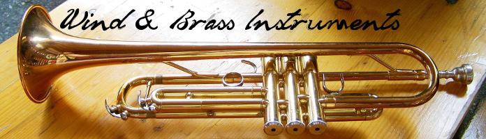 Meet the Wind/Brass Instruments - Wednesday, July 27 @ 2:30 - Drop In