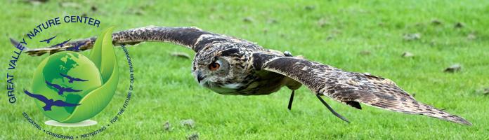 Birds of Prey - Thursday, October 27 @ 6:30