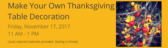 Make Your Own Thanksgiving Table Decoration at the Main Library