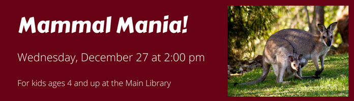 Mammal Mania! at the Main Library