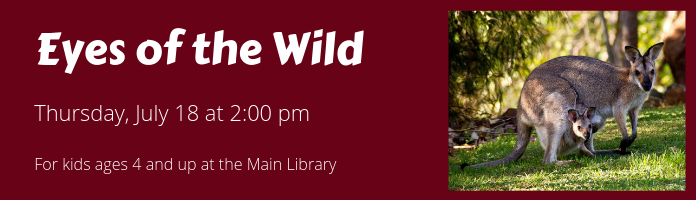 Eyes of the Wild at the Main Library