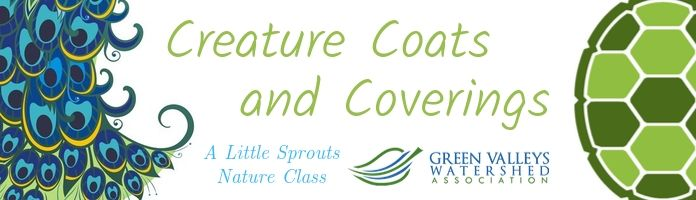 Little Sprouts Nature Class at the Royersford Library