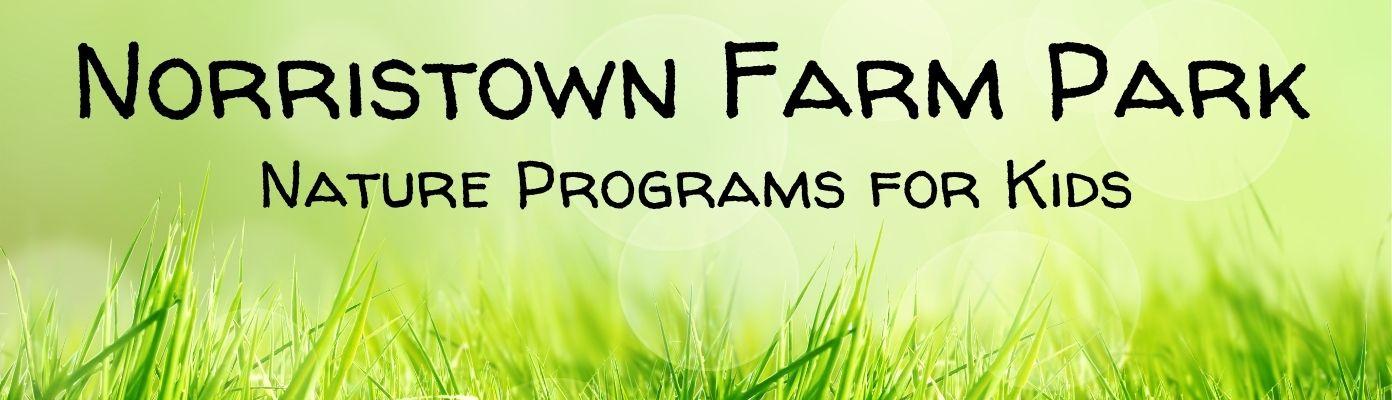 Norristown Farm Park Talks about Butterflies